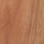Cabinet Wood Species - Lyptus